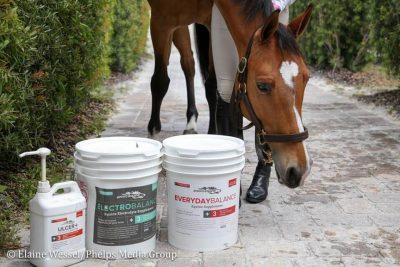ENVIRO EQUIN & PET Partners for THE TEN horses!