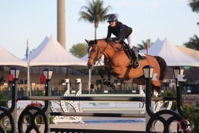 Intro L with another win in the 1.35m class at TRYON