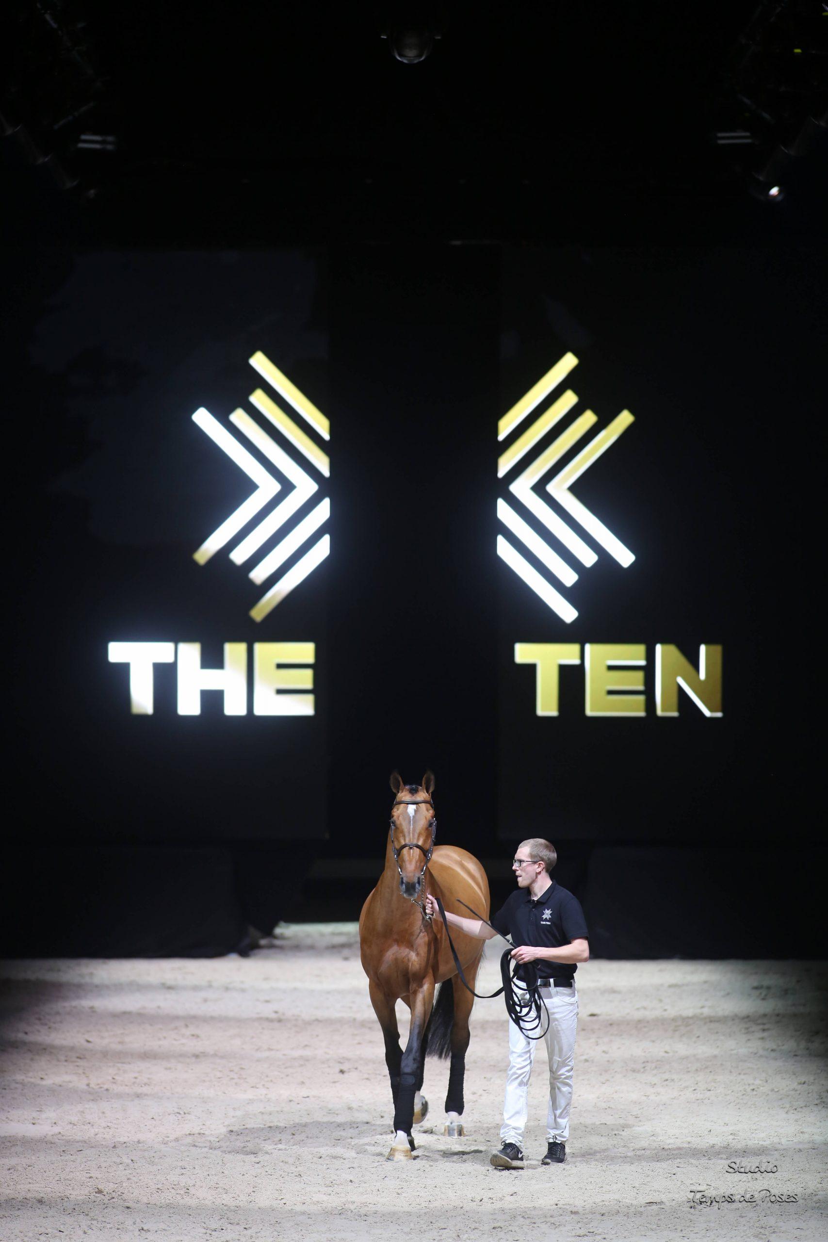 The Ten Horses