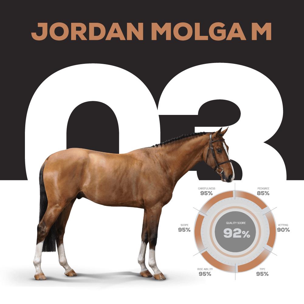 Catalogue Number 3 : JORDAN MOLGA M