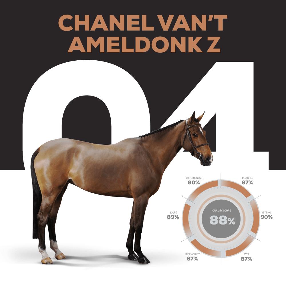 Catalogue Number 4 : CHANEL VAN'T AMELDONK Z