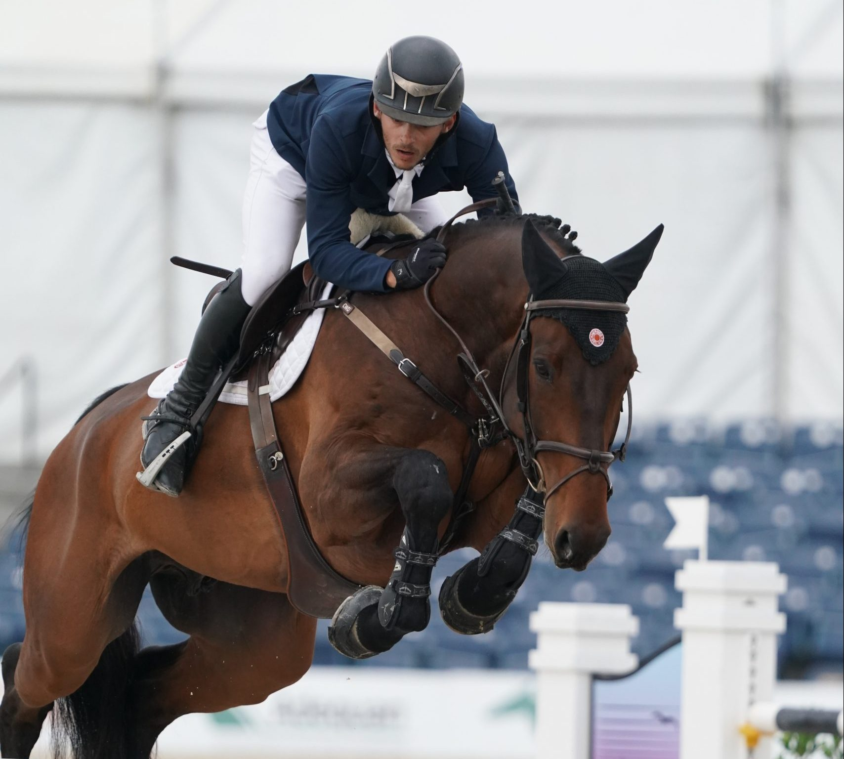 Victory for Lenzo 5 and Mark Bluman at the CSI5* HITS