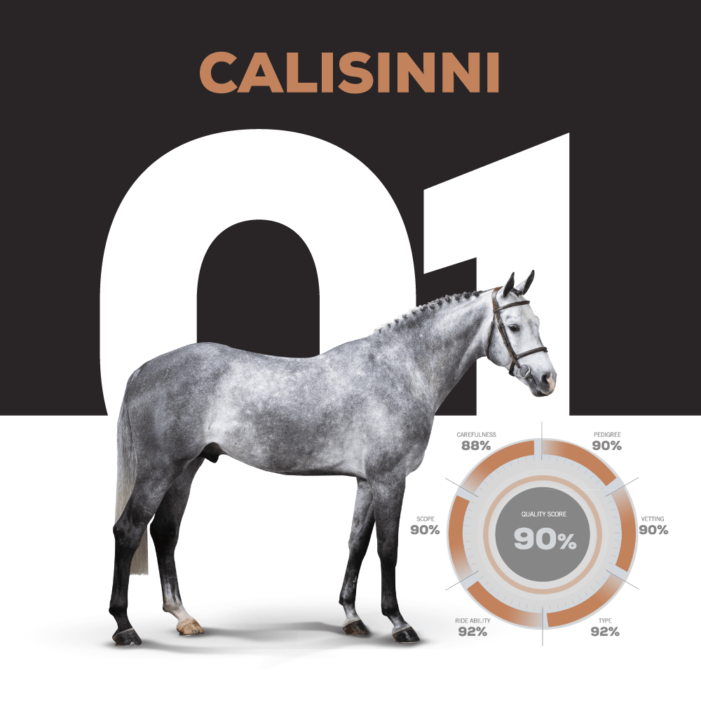 Catalogue Number 1 : CALISINNI