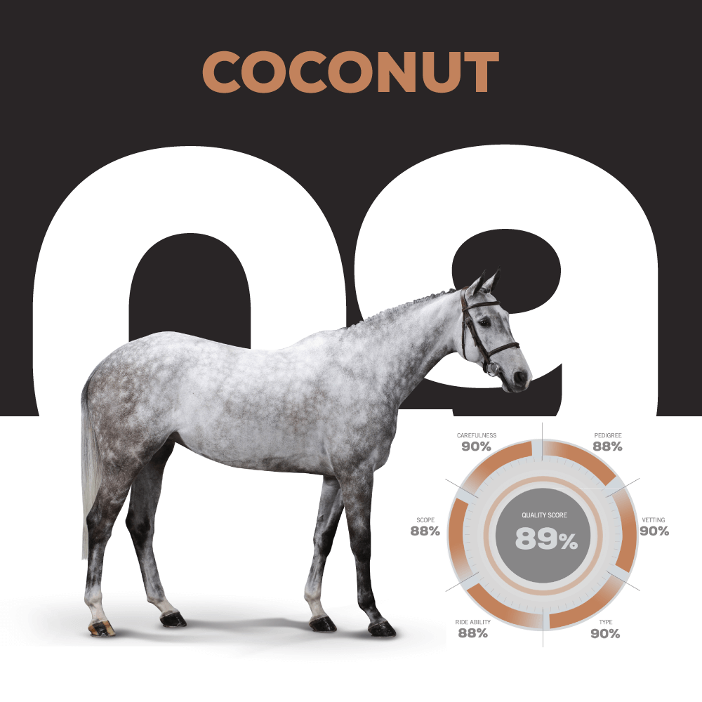 Catalogue Number 9 : COCONUT