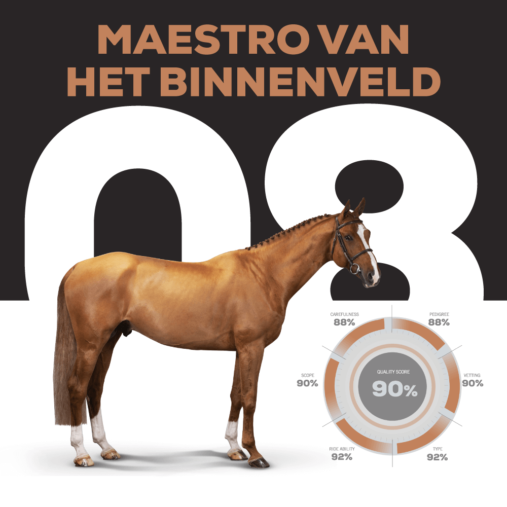 MAESTRO VAN HT BINNENVELD – Catalogue Number 8