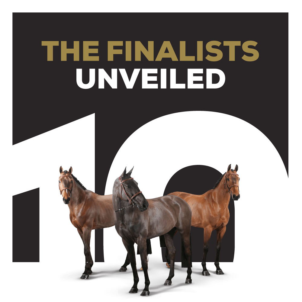 The Finalists unveiled!